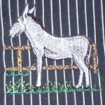 Bergheimer Esel
